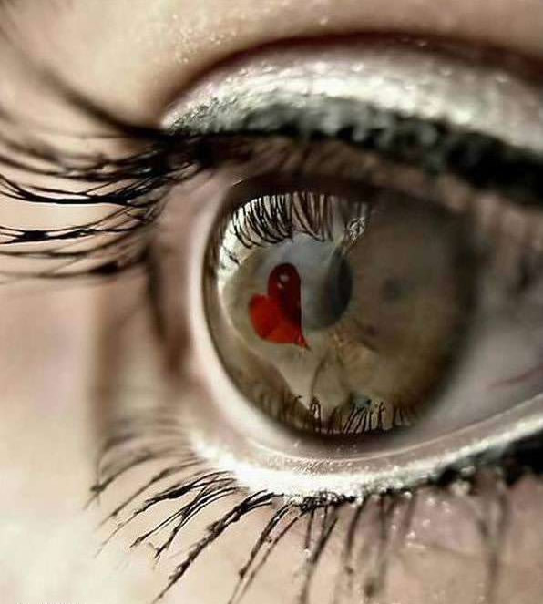 Красота человеческого глаза, неописуема.