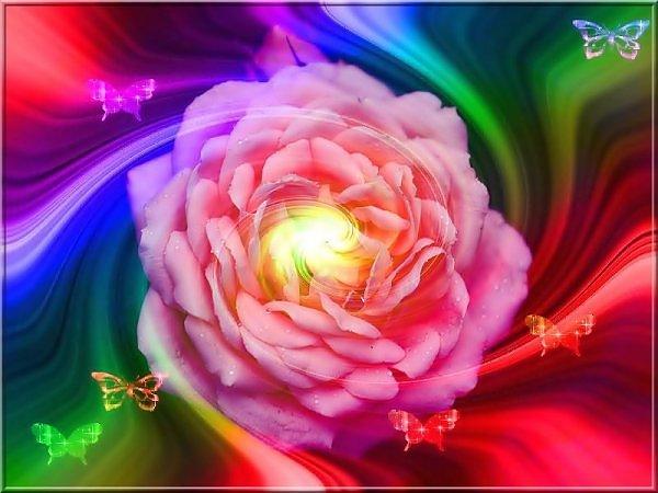 ���� ����� �������� flowers_76.jpg