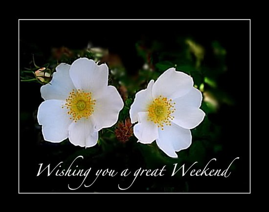 Have a great weekend Graphics
